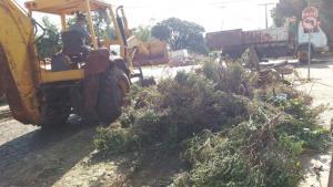 SMOV está constantemente trabalhando pela limpeza urbana
